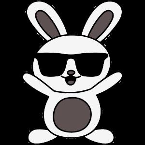 Sunglass Rabbit