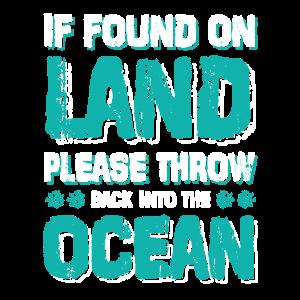 ozean tauchen