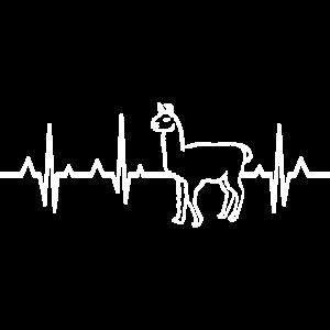 Alpaka Herzschlag EKG Lama Anden Peru
