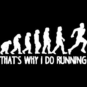 Evolution ausführen