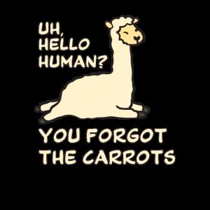 Alpaca Spruch