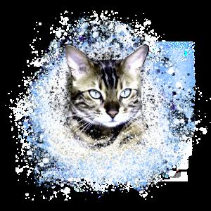 katze ,illustration ,blau , Aquarell, kätzchen
