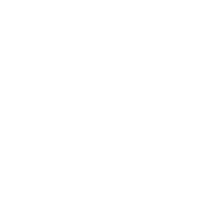 Life is bette with a golden retriever