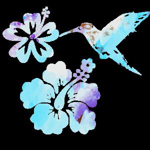 kolibri, aquarell, blau, Illustration,pink