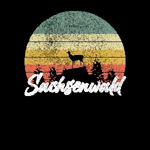 Sachsenwald Wald Hirsch Berg Wandern