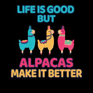 Alpaka Spruch
