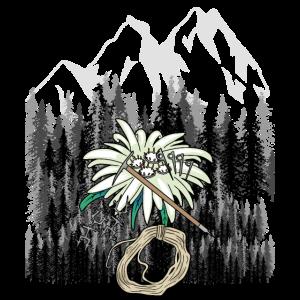 Alpen Tirol Schwarzwald Alm Dolomiten Allgäu Alm