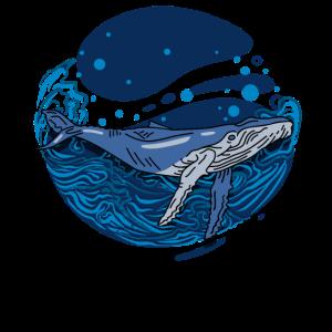 Blauwal Ozean Seefisch Orca Meer
