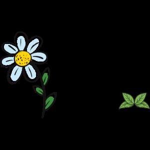 Gänseblümchengarten