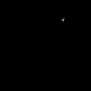 Drohnenpilot Drohne Kamera Quadrocopter Evolution