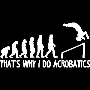 Akrobatik Evolution