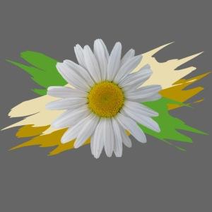 Margeriten Blüte, Blumen, floral, Gänseblümchen