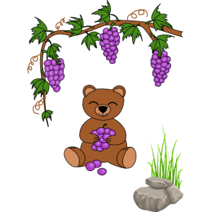 teddy bear with grapes