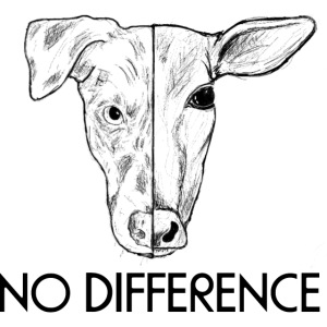 No Difference
