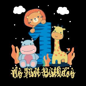 Geburtstag Baby - 1. Geburtstag