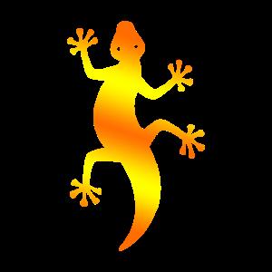 Southwestern Lizard