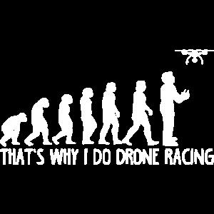 Drohnen-Evolution