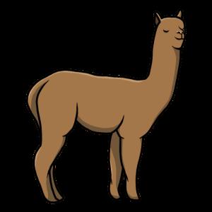 Alpaka, Comic, süß, gezeichnet