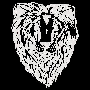 Lionhead Löwenkopf Löwenmähne