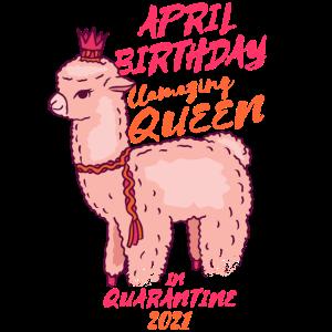 Lama April Geburtstag Königin In Quarantäne 2021