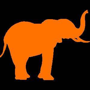 Oranger Elefant im Tierreich