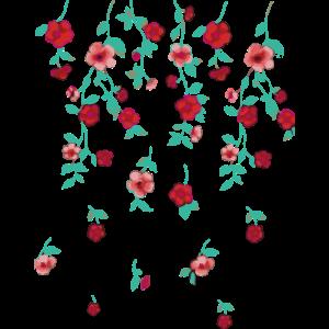 rosen,ranken,blumen, illustration,pink