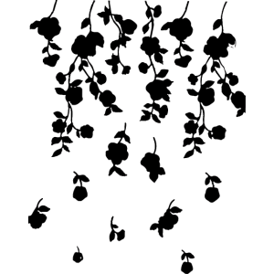 blumen,blumenranke,, illustration,schwarz