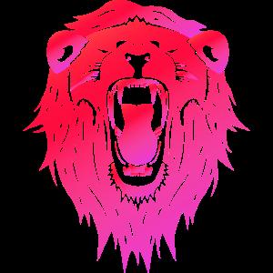 Löwe Afrika Wüste Wildnis König