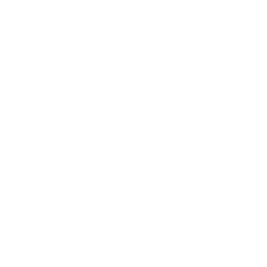 Maler Evolution Maler Malerei Wandmalerei
