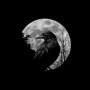 Schwarze Krähe mystischer Rabe bei Vollmond