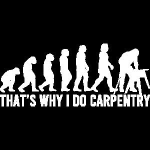Zimmerei Evolution