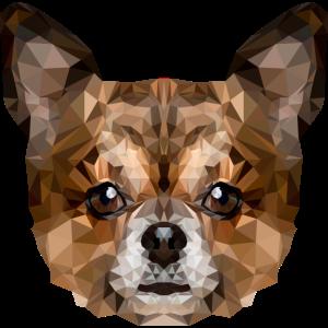 Hund Chihuahua Polygon
