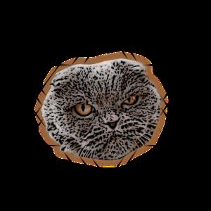 Katze von Doom