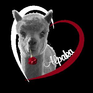Ich liebe Alpaka. I love Alpaka