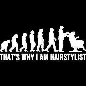 Haistylist Evolution