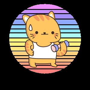 Hantel Katze Sonnenuntergang