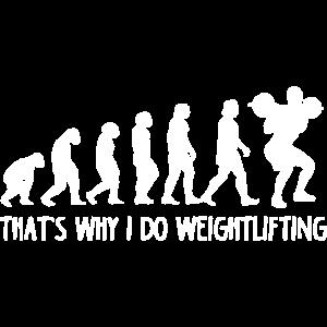 Gewichtheben Evolution