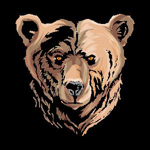 Bear Grizzly Gesicht Kopf anschauen