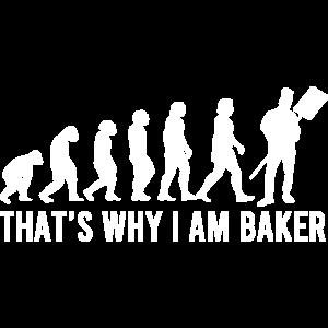 Baker Evolution
