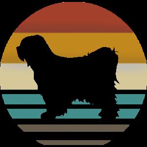 Tibet terrier retro