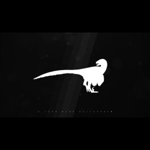 Raptor Contrast