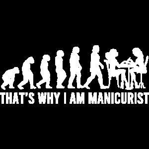 Maniküristische Evolution