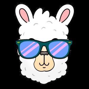 Alpaka Kopf mit Sonnenbrille