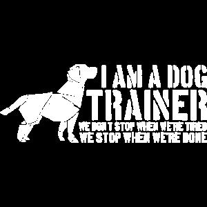 Hundeerziehung Hundetrainer Hund Hundetraining