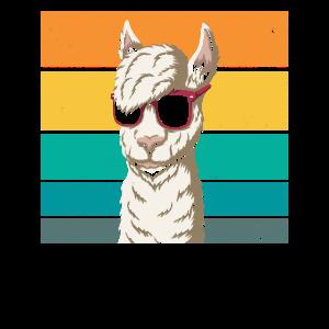 Alpaka Cool Sonnenbrille