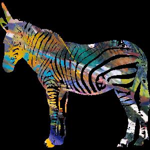 Zebra,einhorn, bunt , illustration,graffiti