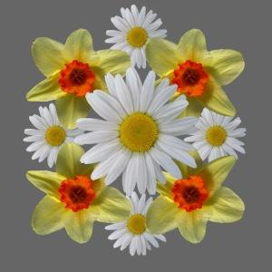 Narzissen Margeriten Osterglocken Blumen Blüten