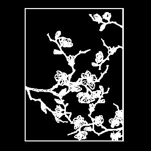 Floral Design Kirschblüten Outline Weiss