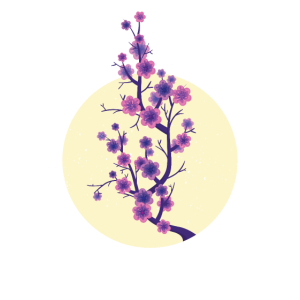 Japan Vollmond Sakura Japanische Kirschblüte