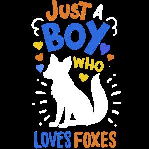 Füchse Fuchsliebhaber Fuchs